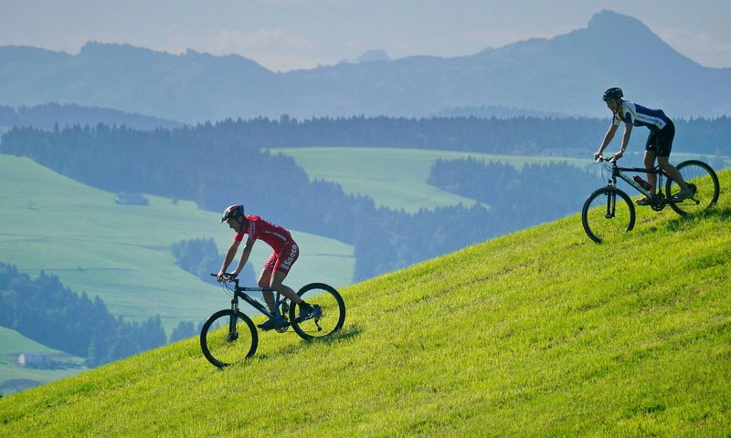 Downhill in Scheidegg